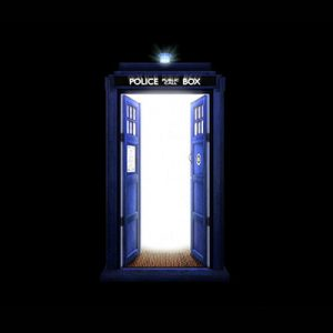 new window company, lincolnshire doors, famous doors, the tardis, Doctor who