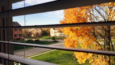 How do windows & doors impact the value of your home?